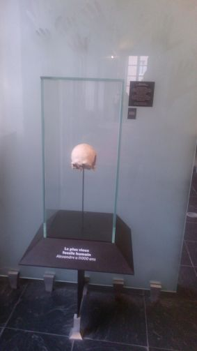 alexandre-11-000-ans