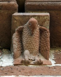 VT aigle