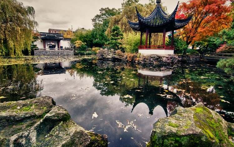 jardin-chinois-étang-artificiel-abri-arbres-pierres