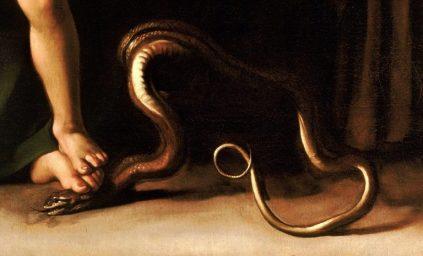 Particolare-serpente-schiacciato-768x465