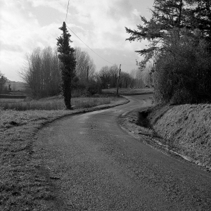 Routevirage