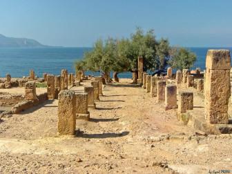 Le site de Tipasa (Algérie), auquel Florilèges a déjà consacré un article, crédits : Cyril Preiss
