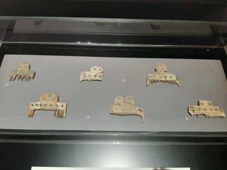 Peignes wisigoths trouvés à Toulouse et aux alentours, photo personnelle